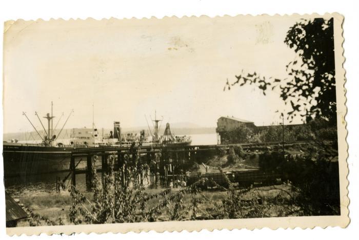 Dock, Chemainus (VMM71.51)